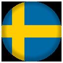 Kurs szwedzkiego kraków