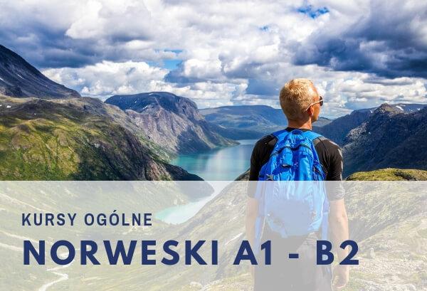 kursy ogólne języka norweskiego